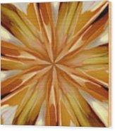 Cappachino Wood Print