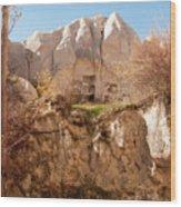 Cappadocia Dovecotes Wood Print