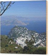 Capri At The Top Wood Print