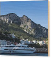 Capri Island Harbor  Wood Print