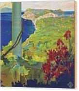 Capri, Italy, Italian Riviera, Scenery Wood Print