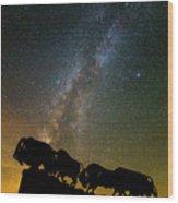 Caprock Canyon Bison Stars Wood Print