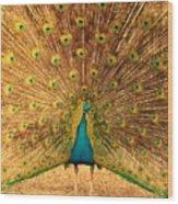 Captain Peacock Wood Print