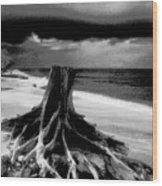 Captiva Storm Wood Print