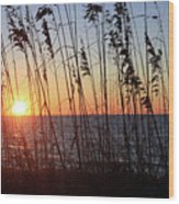 Captiva Sunset Wood Print