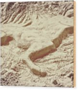 Captured In The Sand Art Wood Print