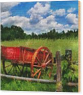 Car - Wagon - The Old Wagon Cart Wood Print