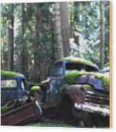 Car Lot In The Forest Wood Print