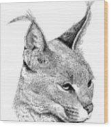 Caracal Wood Print
