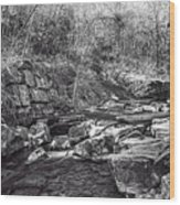 Caradocs Falls 2 Mono Wood Print