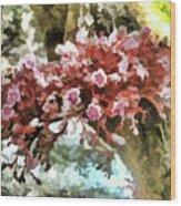 Carambola Flower Wood Print
