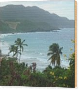 Carambola Photograph Virgin Islands Wood Print
