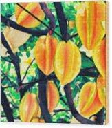 Carambolas Starfruits Wood Print