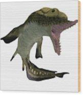 Carboniferous Edestus Shark Wood Print
