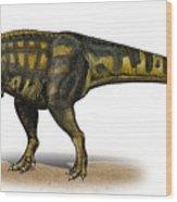 Carcharodontosaurus Iguidensis Wood Print