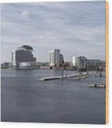 Cardiff Bay 3 Wood Print