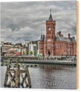 Cardiff Bay Skyline Wood Print