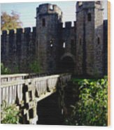 Cardiff Castle Gate Wood Print
