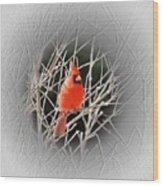 Cardinal Centered Wood Print
