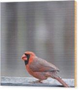 Cardinal Colors Wood Print
