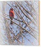 Cardinal I Wood Print