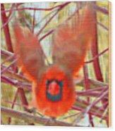 Cardinal In Flight Abstract Wood Print