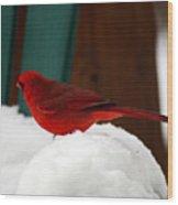 Cardinal In Snow II Wood Print