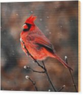 Cardinal On A Snowy Day Wood Print