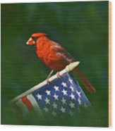 Cardinal On American Flag Wood Print