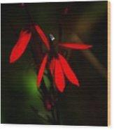 Cardinal  Plant Wood Print