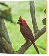 Cardinal Render Wood Print