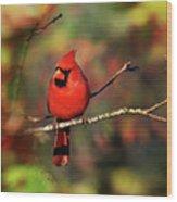 Cardinal Territory Wood Print