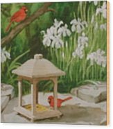 Cardinals Feeding Wood Print