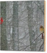 Cardinals In Snow Wood Print
