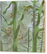 Cardwell Hill Forest Wood Print