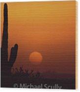 Carefree Sunset Wood Print