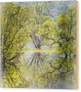 Caress In The Mist Wood Print