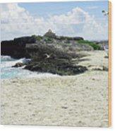 Caribbean Beach Scenic Wood Print