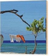 Caribbean Blues 3 Wood Print