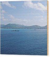 Caribbean Coastline Wood Print