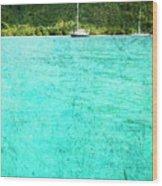 Caribbean Cruising Wood Print