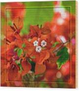 Caribbean Floral Surprise Wood Print