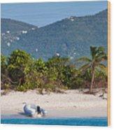 Caribbean Island Wood Print
