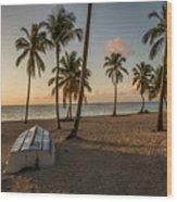 Caribbean Life Wood Print