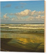 Caribbean Seascape Wood Print