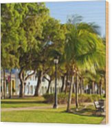 Caribbean Waterfront Wood Print