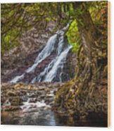 Caribou Falls In Fall Wood Print