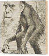 Caricature Of Charles Darwin Wood Print