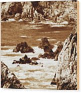 Carmel Highlands 8 Sepia Wood Print