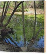 Carmel River At Gilmore Ranch Wood Print